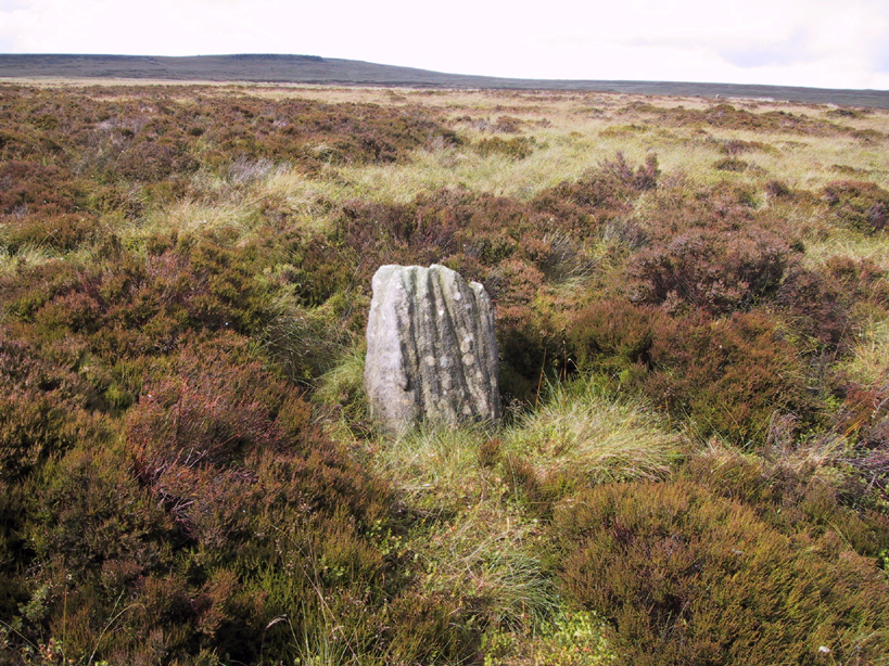 Great Moss Stone - looking north