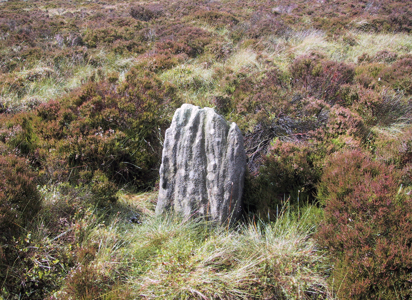 Great Moss Stone - looking NW