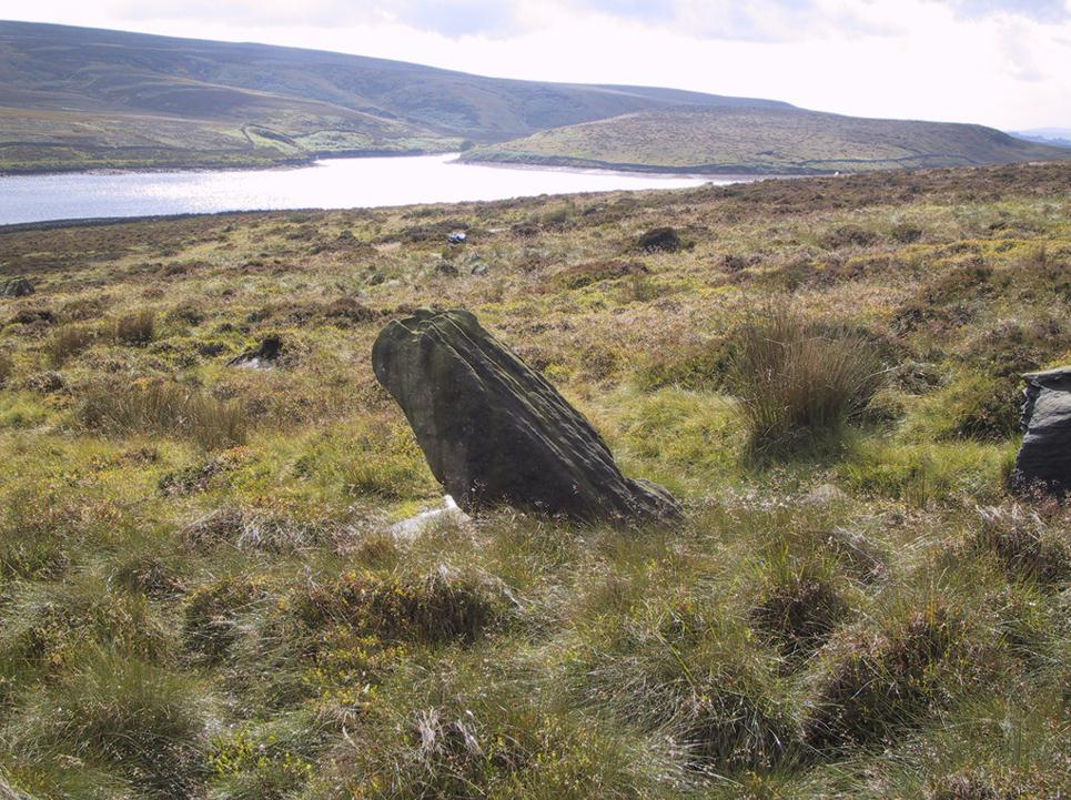 Water Sheddles stone looking SW