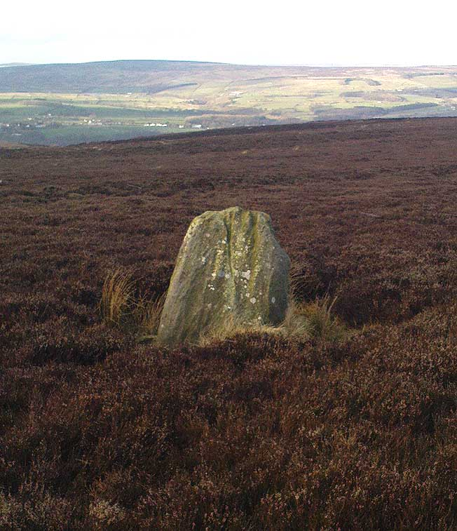 Standing Stone on Green Crag Plain, Ilkley Moor