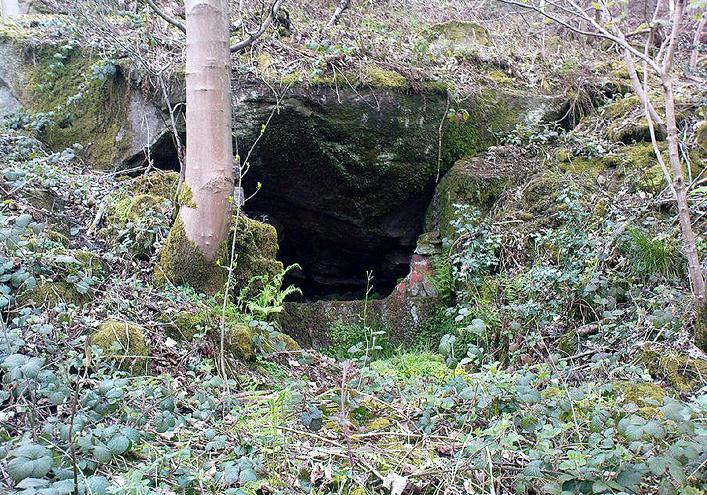 Elm Crag Well, Bell Bank Wood, Bingley