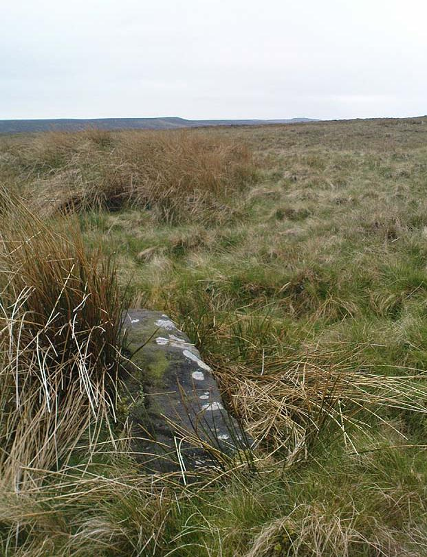 Old Bess Stone, with Crow Hill on the distant skyline