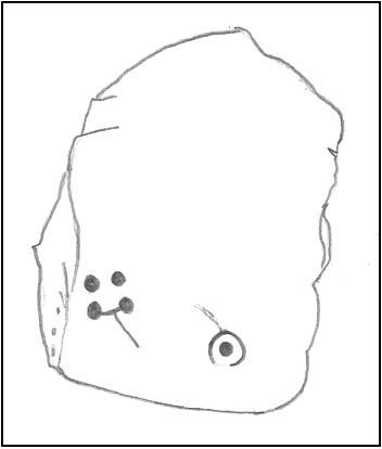 First sketch of the stone