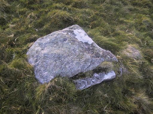 Single cup-marked stone (photo by Richard Stroud)