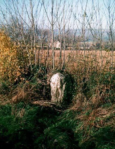 Boulter's Barn standing stone, Churchill (Tom Wilson)