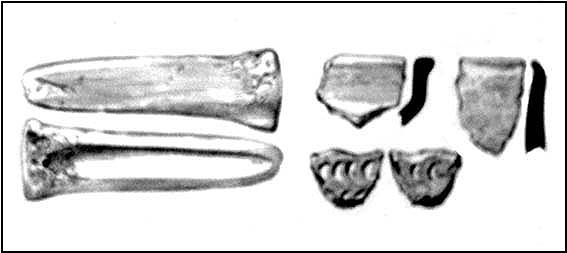 Some of the remains found in Bown Hill's long barrow