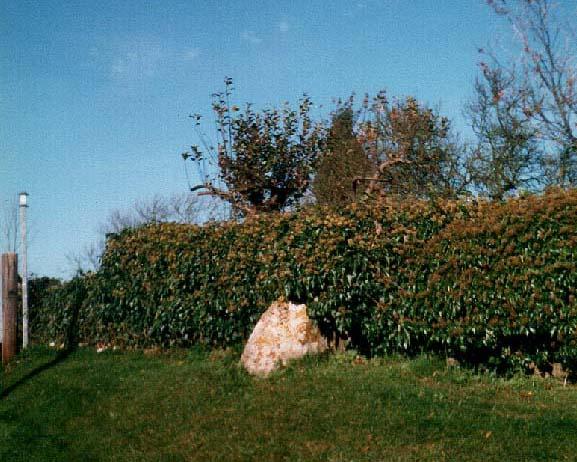 Lidstone monolith