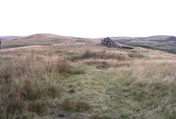 The much-overgrown Lower Apronful, with modern cairn on top