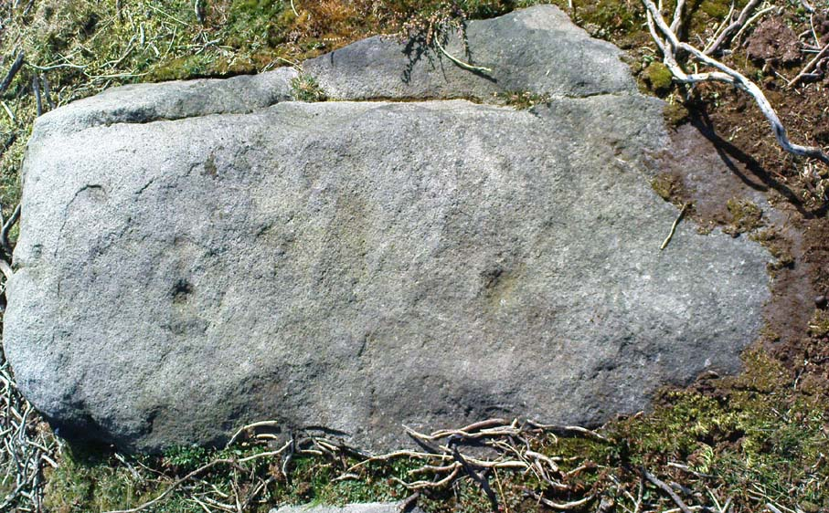 Ringtail Stone - facing south