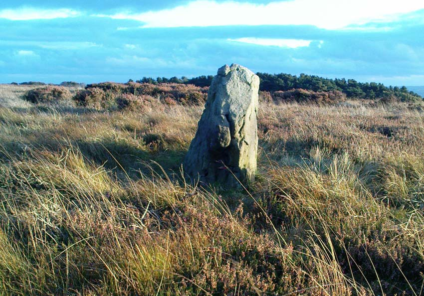 Todmoor Stone, looking south