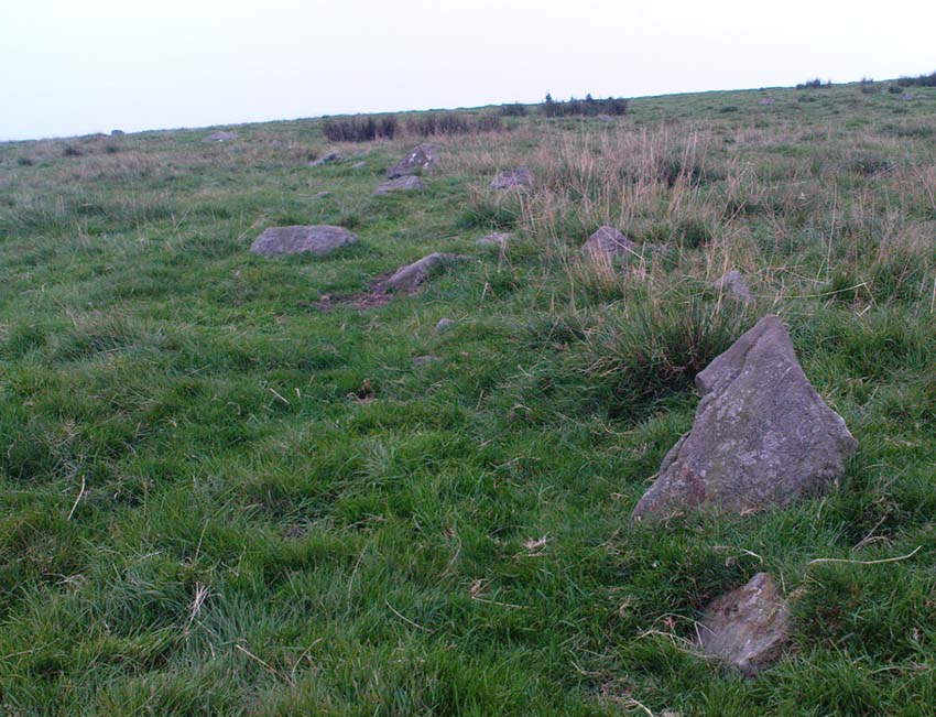 Section of walling, Yarnbury