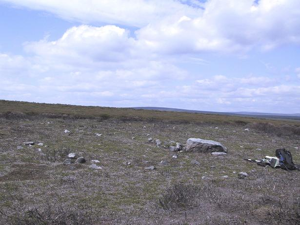 Barely visible remains of walling
