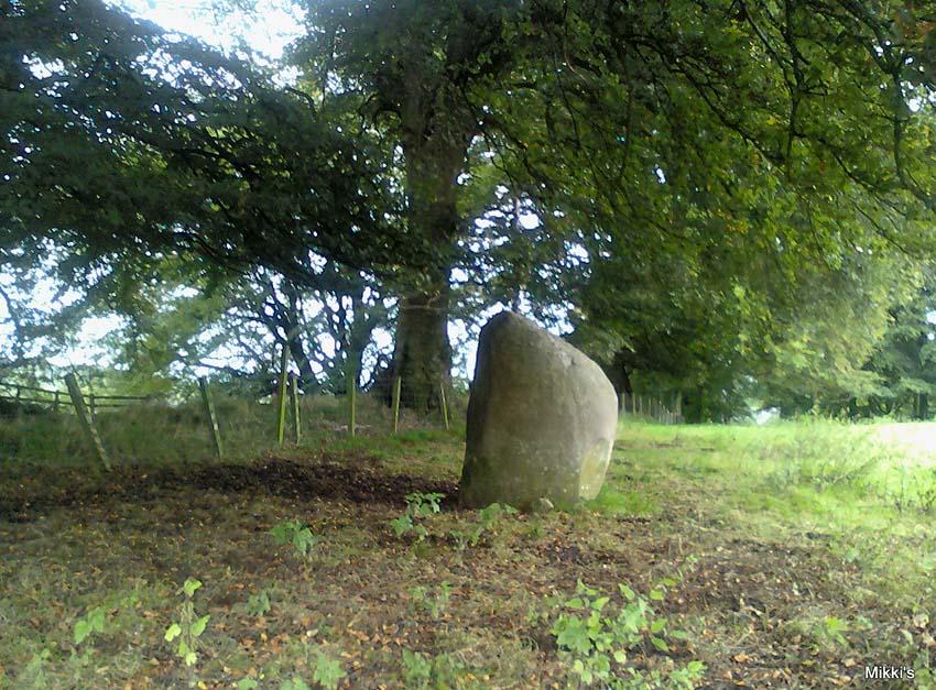Skip Knowe stone