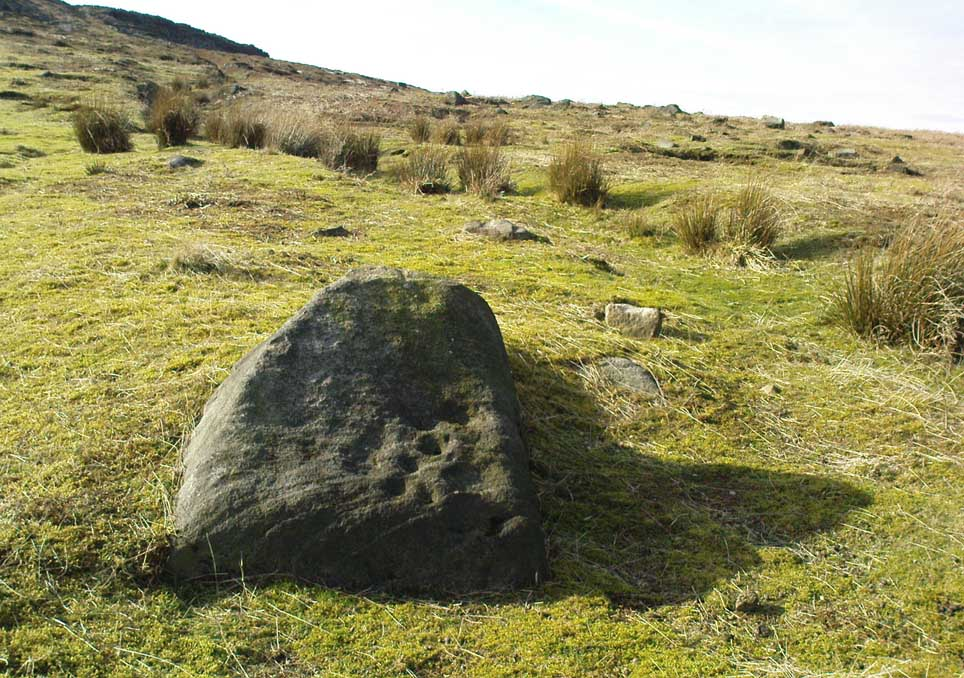 Cupmarked stone west of Coldstone Beck