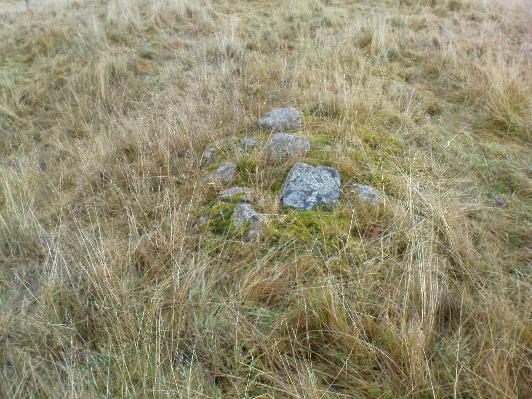 Small overgrown cairn 10 yards away