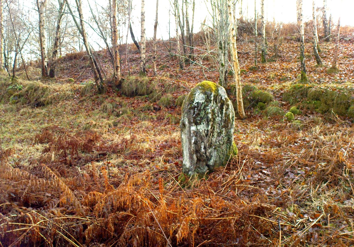 The old mossy stone
