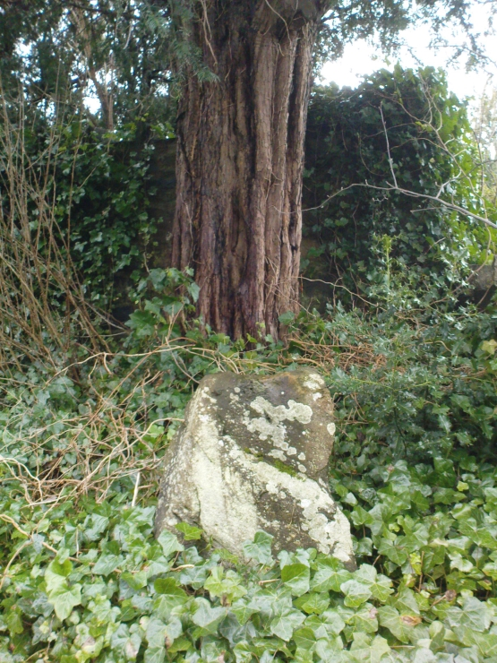 The stone & the yew