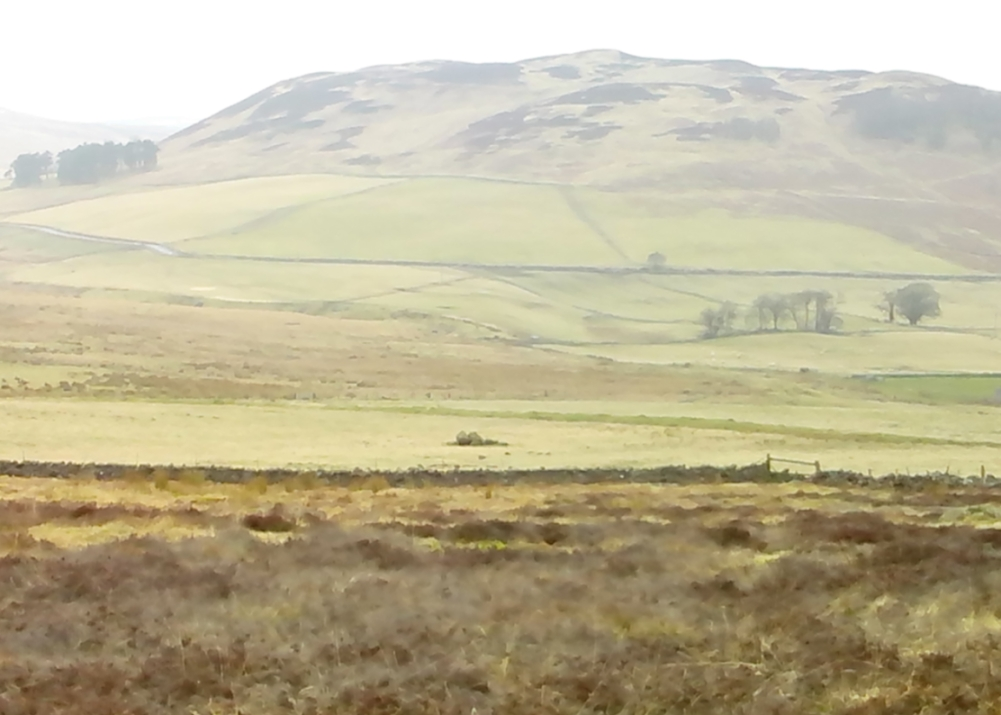 Landscape of the Giant's Knowe (image credit, Marion Woolley)