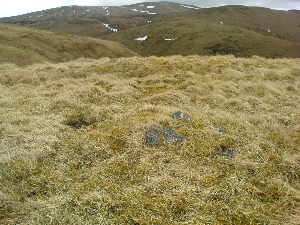 Small cairn inside the enclosure