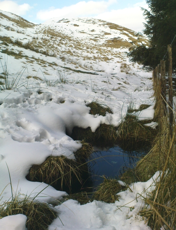 Maiden's Well - and the fairy haunt of Maiden Castle hill behind