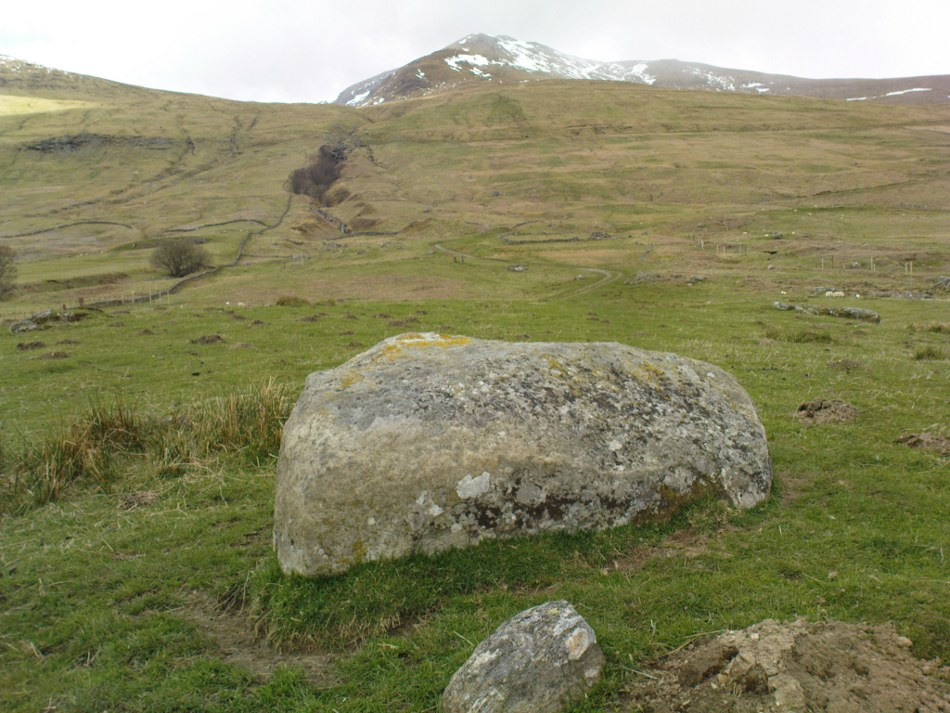 Cup-marked stone, with Ben Lawers to the rear
