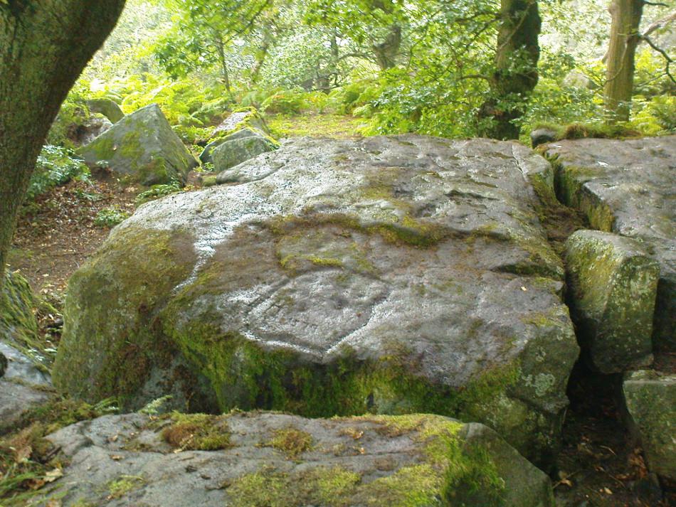 Panorama Woods Enclosure Carving