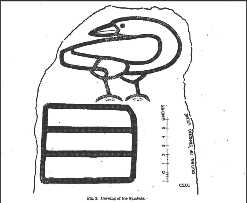 Charles Calders drawing of the carvings