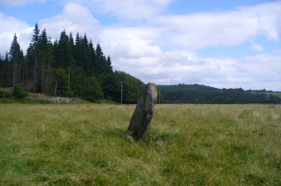 Standing stone, looking NE