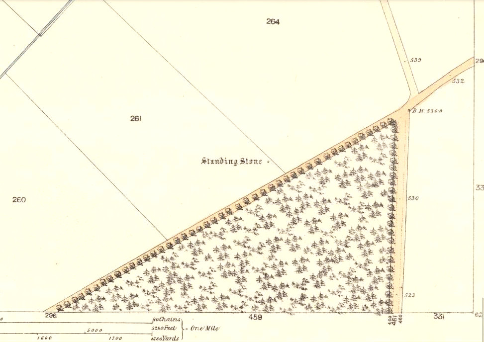 1865 OS-map showing the stone