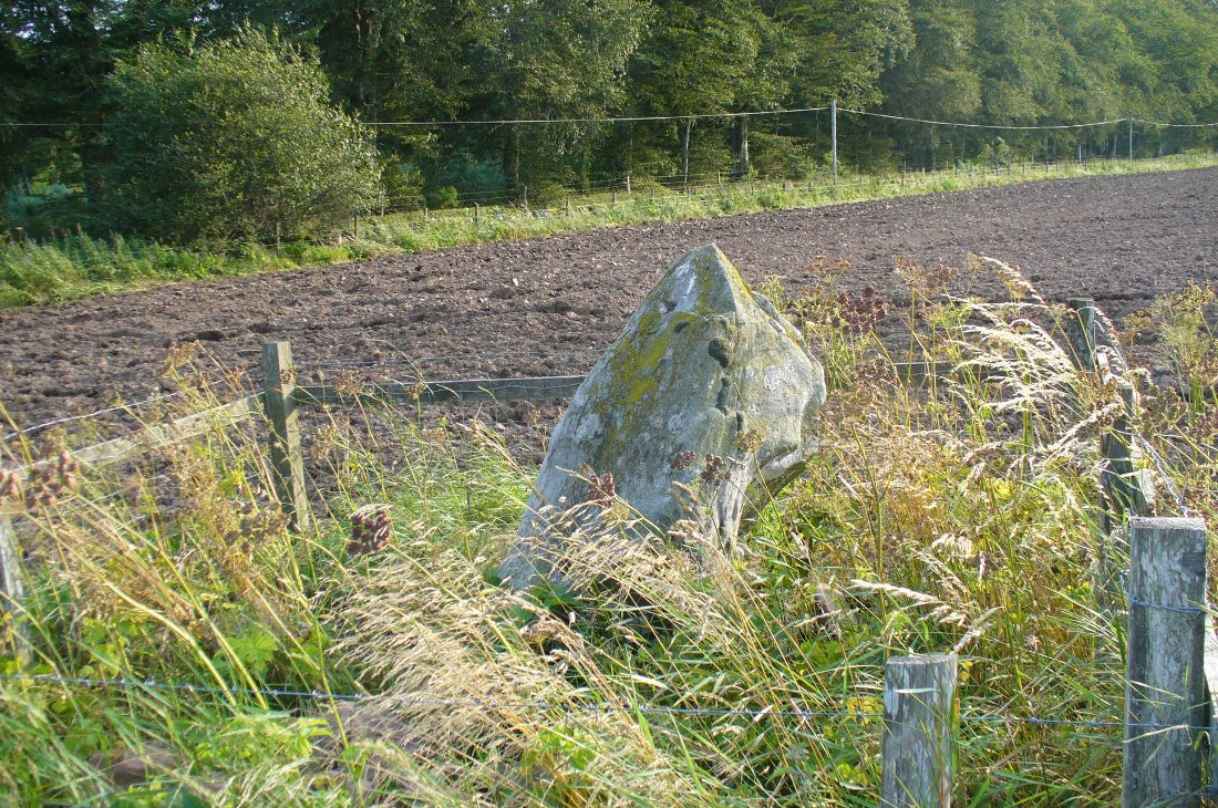 The Caddam stone, looking SW