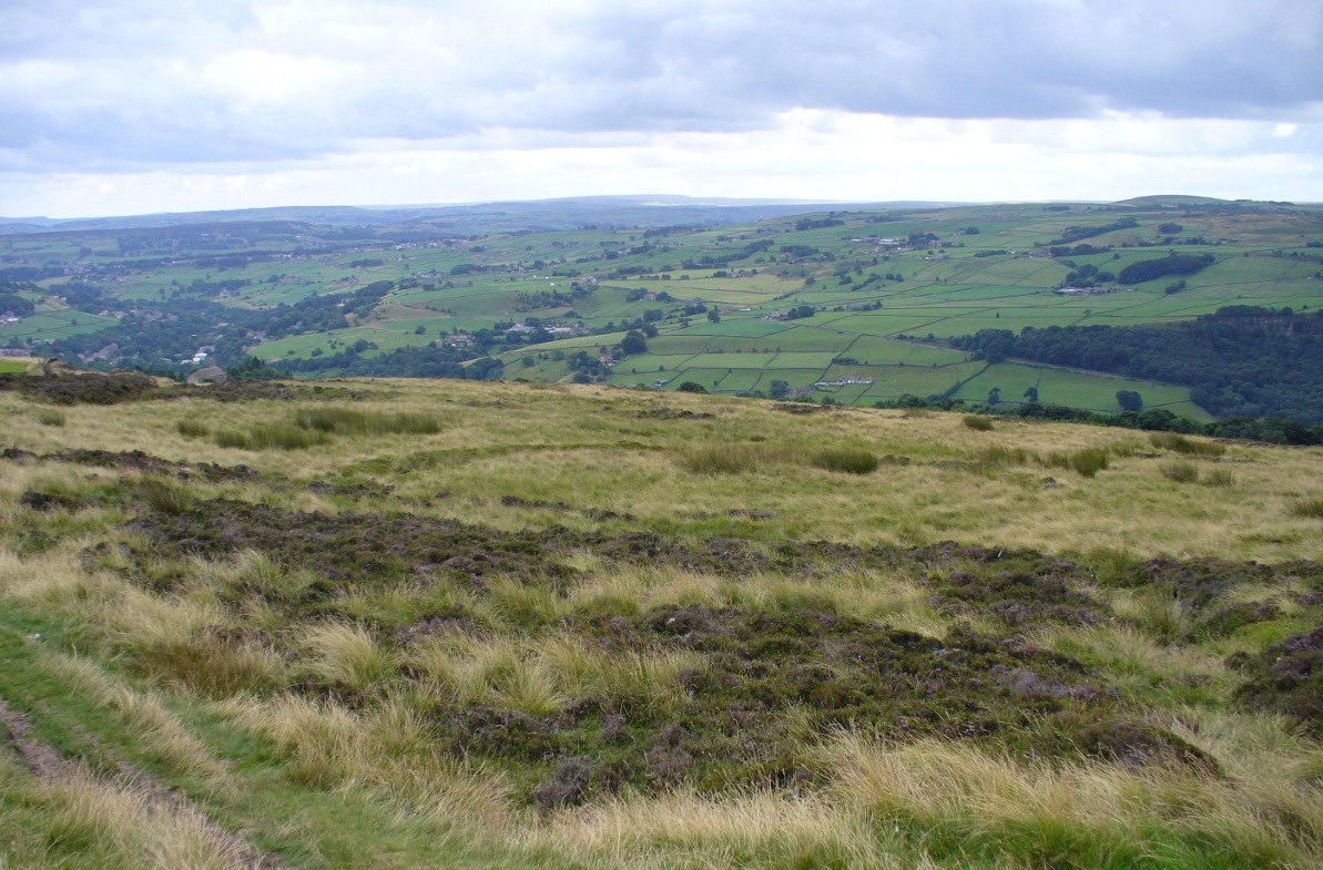 Near the centre of this photo, the large 'ring' can be seen