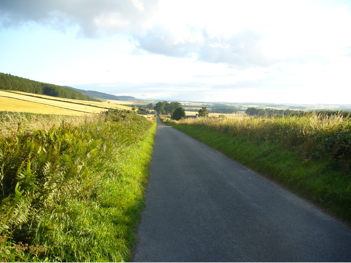 Looking dead straight from the Hill of Ballunie to Leys.