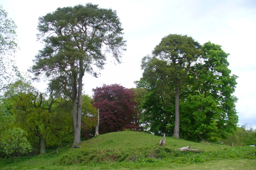 The mound and its trees