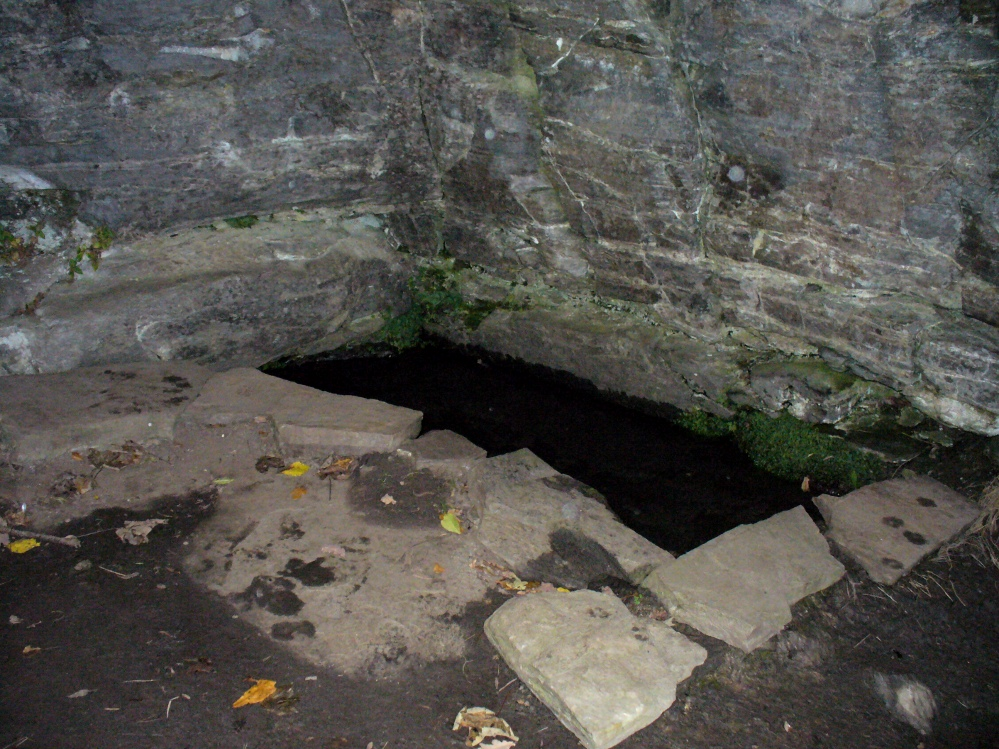 The pool of St David's Well