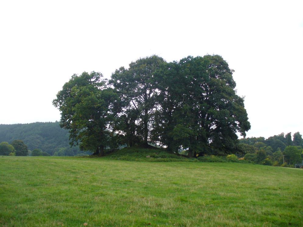 The faerie mound of Strowan