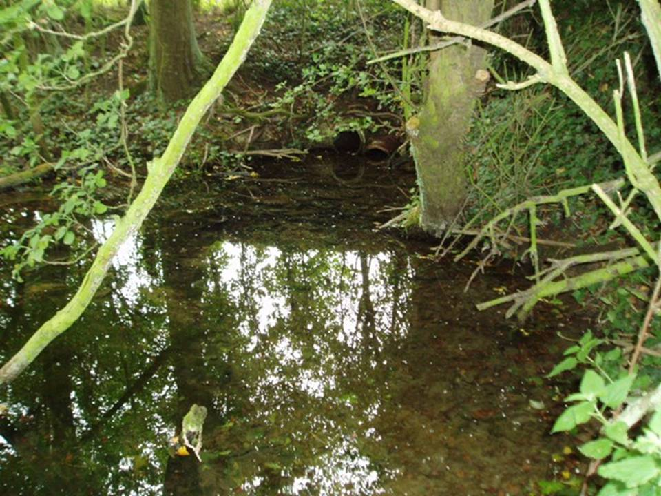 Holy Well, Haxey