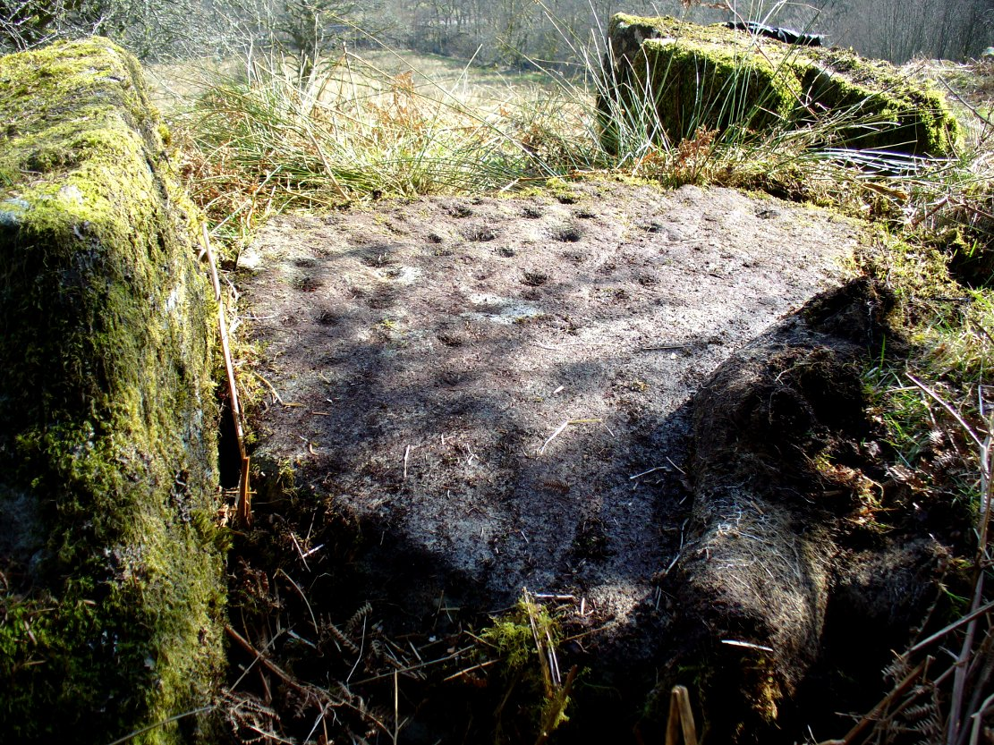 The Druidsfield 2 cup-marked stone