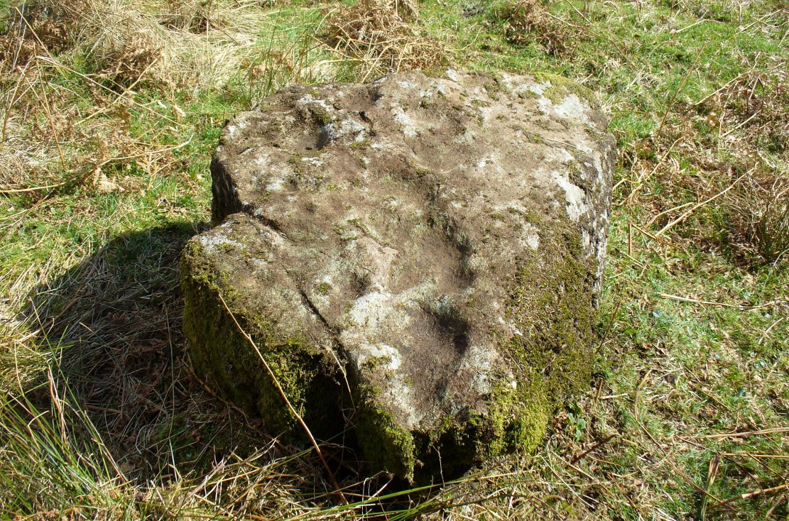 The Druidsfield-3 carved stone