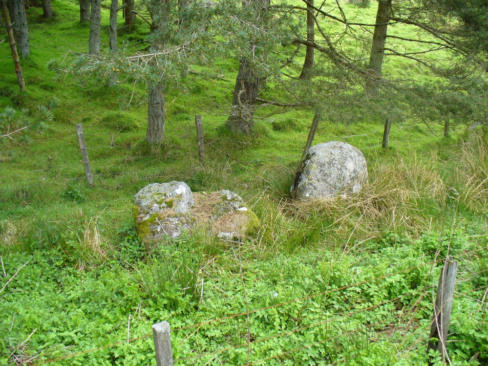 Remains of stones at Fourstanes