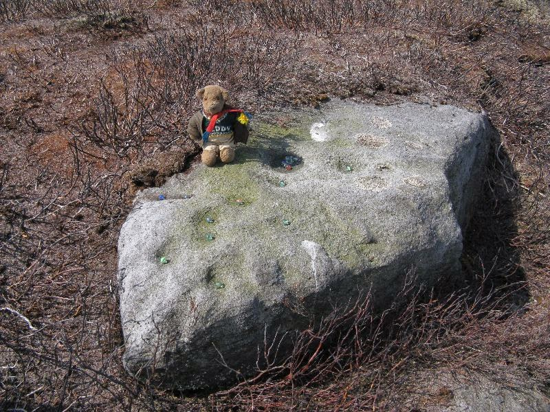 Teddy's very own cup-marked stone!