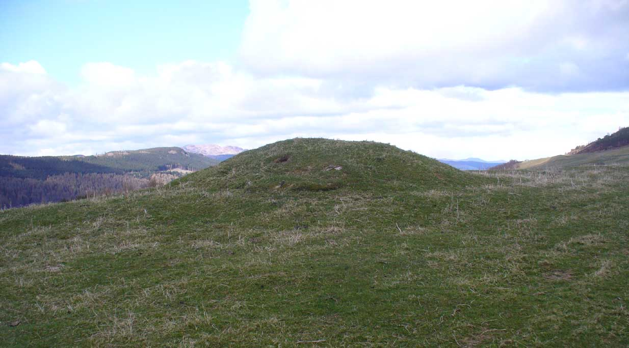 The tumulus looking NE