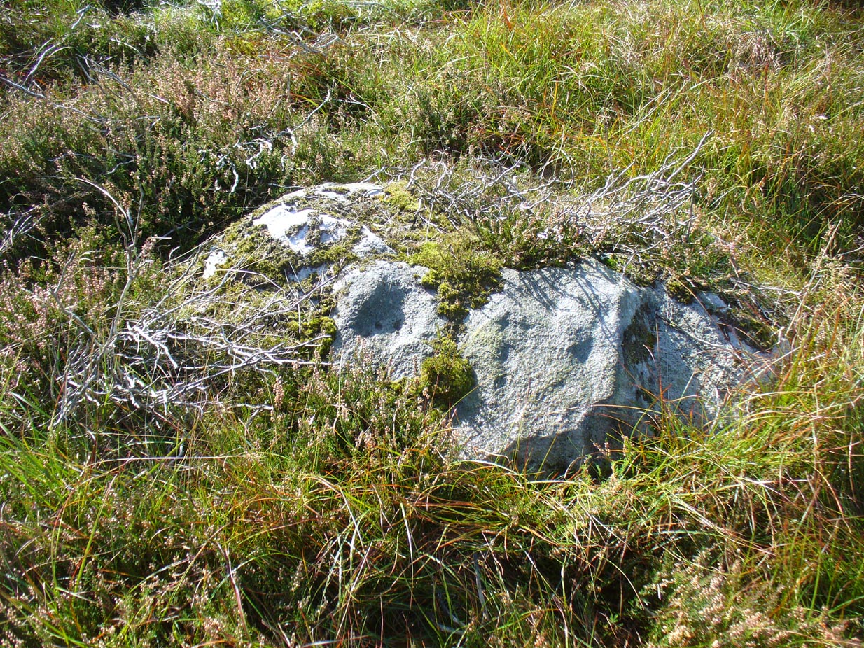 Stanbury HIll cup-marked rock