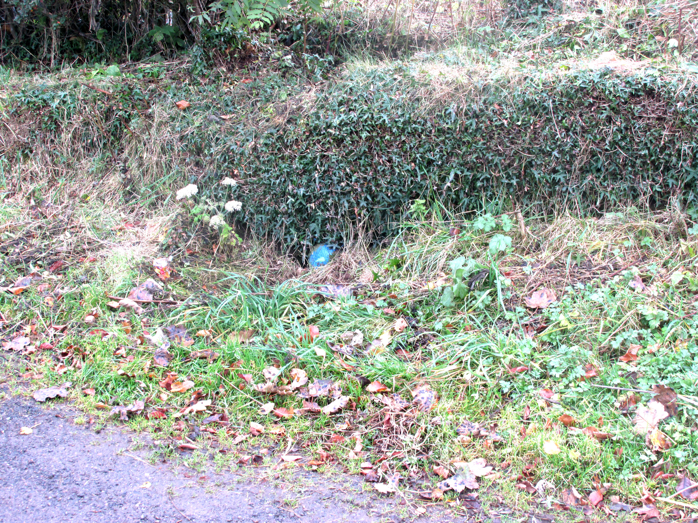 The Water from the well is piped to a roadside cistern in front of the blue painted stone