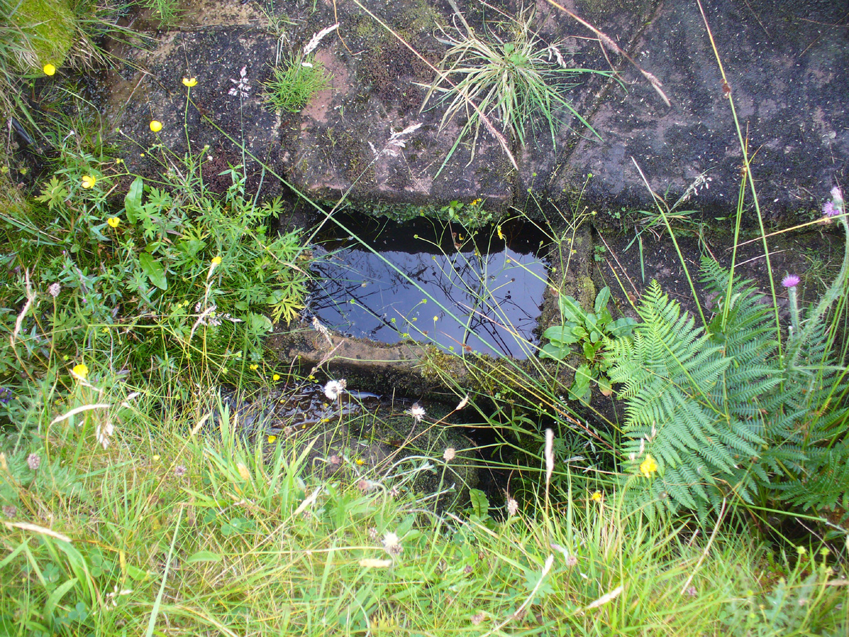 Secondary stone trough