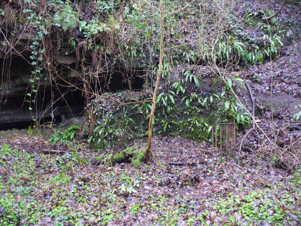 Remains of the Borgie Well