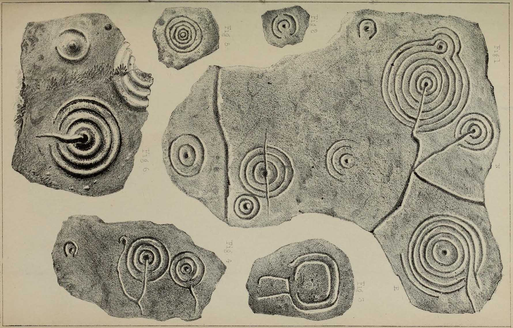 Cup-and-Ring stones
